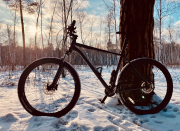 Сannondale Trail 5 (2020) Kiev