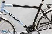Дорожний Бу Велосипед Giant на планетарке из Германии-Магазин VELOED.c Dunaivtsi